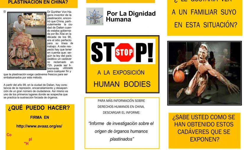 Stop a la Exposición Human Bodies